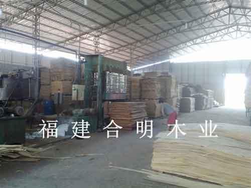 漳州合明木业福建建筑模板厂